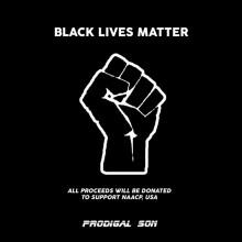 VA - BLACK LIVES MATTER COMPILATION (Prodigal Son)