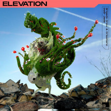 Brigado Crew & Crisstiano & Deer Jade - Elevation (Stil Vor Talent)