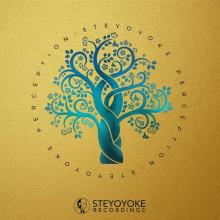 VA - Steyoyoke Perception, Vol. 7 (Steyoyoke)