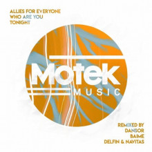 Allies for Everyone - Who Are You Tonight (Motek)