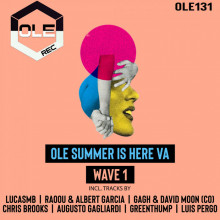 VA - Ole Summer Is Here VA Wave 1 (Ole)