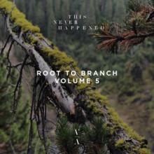 Polar Inc. & Helsloot & Pauke Schaumburg - Root To Branch (Vol.5) (This Never Happened)