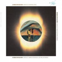 Beacon Bloom - Droplet (Beat & Path)