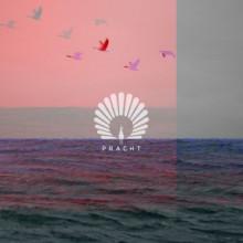 Oliver Schories & Jan Blomqvist - Packard (Giorgia Angiuli Remix) (Pracht)