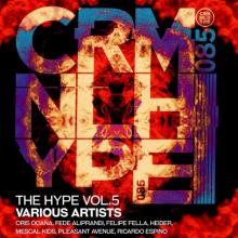 VA - The Hype, Vol. 5 (Criminal Hype)