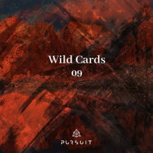 VA - Wild Cards 09 (Pursuit)