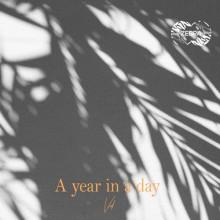 Vid - A YEAR IN A DAY (Zebra)