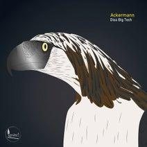 Ackermann - Diss Big Tech (Ignite!)