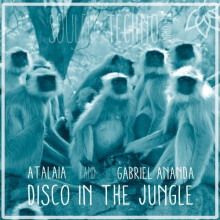 Gabriel Ananda, AtalaiA - Disco In The Jungle (Soulful Techno)