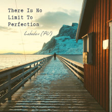 Lebedev (RU) - LEBEDEV (RU) - THERE IS NO LIMIT TO PERFECTION LP (Rhythm Section)