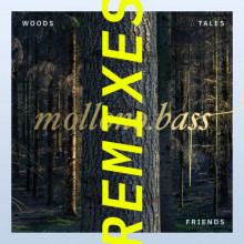 Mollono.Bass, & Matan Caspi & Einmusik & Paul Ursin & I Am Halo - Woods, Tales & Friends Remixes - Part 1 (3000 Grad)