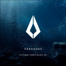 Paradoks - Flying Particles (Purified)