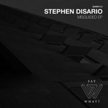 Stephen Disario - Misguided (Say What?)