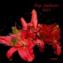 VA - Pop Ambient 2021 (Kompakt)