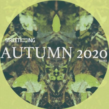 VA - Street King presents Autumn 2020 (Street King)