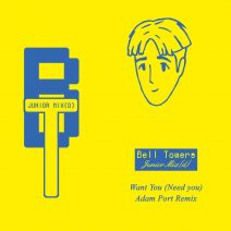 Bell Towers - Want You (Need You) (Adam Port Remix) (Public Possession)