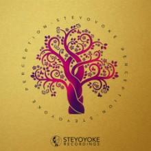 VA - Steyoyoke Perception Vol 8 (Steyoyoke)