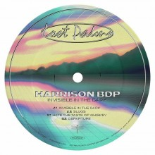 Harrison BD - Invisible In The Dark (Lost Palms)