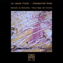 Le Jeune Flück - Unexpected Ends (Sinchi)