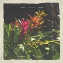 Marsh - Lailonie (The Remixes: Part 2) (Anjunadeep)