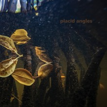 Placid Angles - Touch The Earth (Figure)