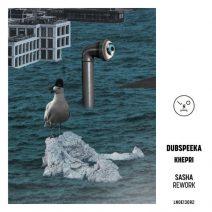 dubspeeka - Khepri (Sasha Rework)  (Last Night On Earth)
