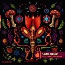 Steve Darko, Nik Thrine - Small Things (DIRTYBIRD)