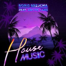 Boris Brejcha & Arctic Lake - House Music (Ultra)