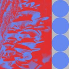 Budakid - Ringo Bingo Remixes (Exploited)