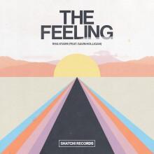 Riva Starr, Gavin Holligan - The Feeling (Snatch!)