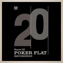 Steve Bug - 20 Years Of Poker Flat Remixes (Poker Flat)