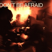 Diplo & Damian Lazarus & Jungle - Don't Be Afraid (Nicola Cruz Remix) (Mad Decent, Because Music)