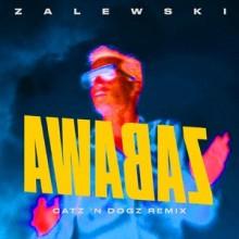 Krzysztof Zalewski - Zabawa  (Catz 'n Dogz Remix) (Kayax Production & Publishing)