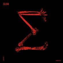 VA - SUM 10 (Second State)