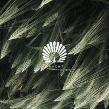 Oliver Schories - Packard (Mihai Popoviciu Remix) (Pracht)