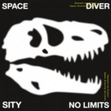 Damiano von Erckert - Space, Diversity, No Limits (Live At Robert Johnson)