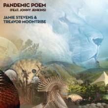 Jamie Stevens & Treavor Moontribe - Pandemic Poem (feat. Jonny Jenkins) (Dreaming Awake)