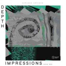 VA - Depth Impressions Issue #22 (Voltaire)