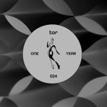VA - TOR : One Year (TOR)