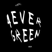 VA - 4evergreen 001 (Apparel)