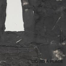 Ron Trent / Gaika - Liquid A Place (Pace)